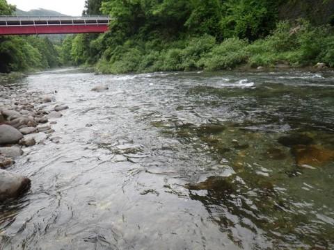 宮が瀬橋上流の写真
