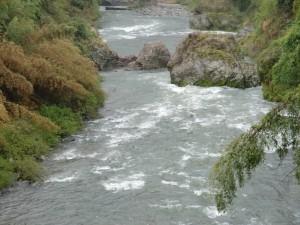 大奈良橋の写真