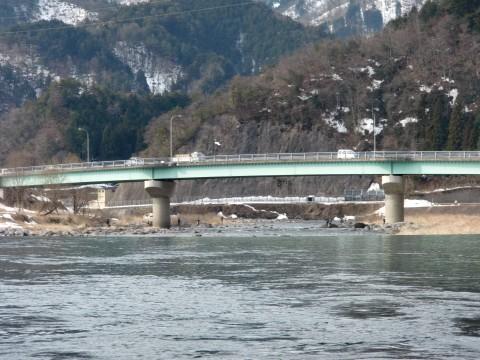 長良川・越佐大橋でのアマゴ釣りの写真